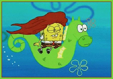 Анимация Губка Боб в образе русалочки несется по морю на морском коньке, мультфильм Губка Боб Квадратные Штаны / SpongeBob SquarePants