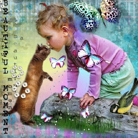 Анимация Девочка с котом и птицей возле сваленного дерева, летают бабочки, слева надпись (Beautiful moment / Красивый момент)