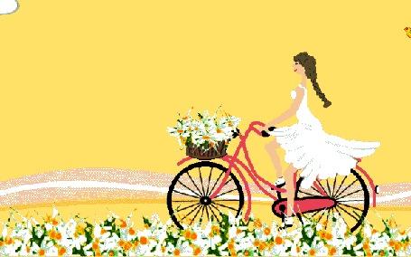 Анимация Девушка с цветами в корзине на велосипеде едет по дороге, вокруг цветы, на небе летают птицы
