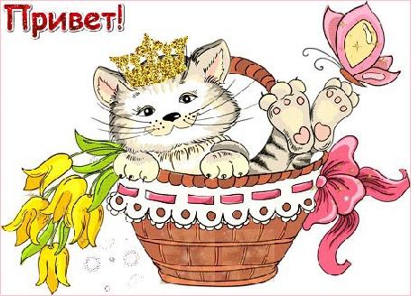 Анимация Кот в короне с бабочкой на лапе сидит в корзинке (Привет!)