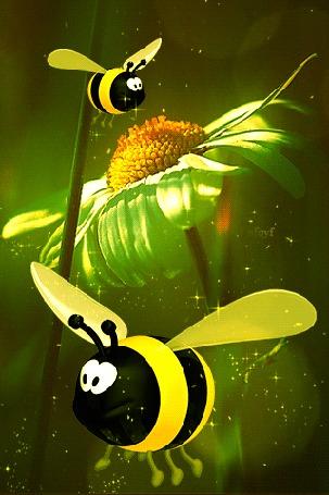Анимация Пчелы парят над ромашкой (© zmeiy), добавлено: 18.05.2016 22:24