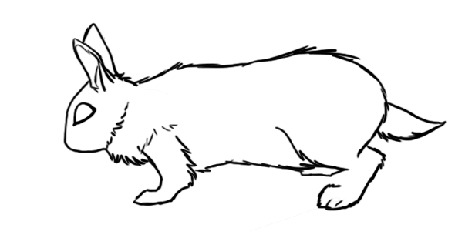 Анимация Нарисованный кролик на белом фоне, by snow-body