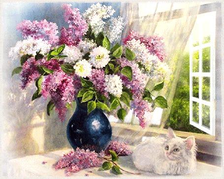 Анимация Кот сидит у окна и смотрит на бабочку, которая летает возле букета в вазе