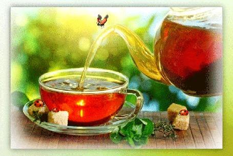 Анимация Из заварника наливается чай в чашку, над которой порхает божья коровка