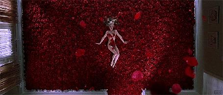 Анимация Девушка в окружении красных лепестков роз