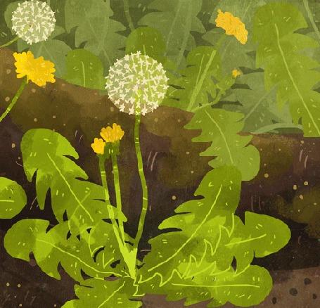 Анимация Птичка, божья коровка, улитка и мышка в цветах, by Manadhiel