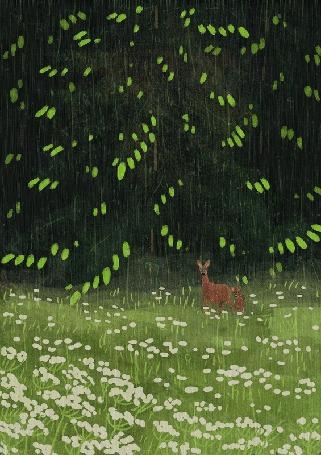 Анимация Олень стоит на лугу под дождем (© zmeiy), добавлено: 02.06.2016 15:17