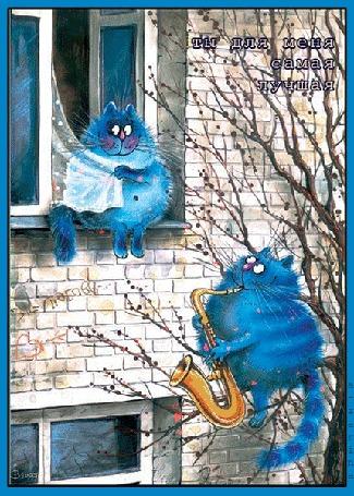 Анимация Кот сидит на дереве и играет серенаду кошке, сидящей на подоконнике (Ты для меня самая лучшая), by a l zarina