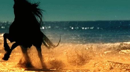 Анимация Девушка в длинном платье в пустыне подходит к вороному коню и скачет на нем к побережью