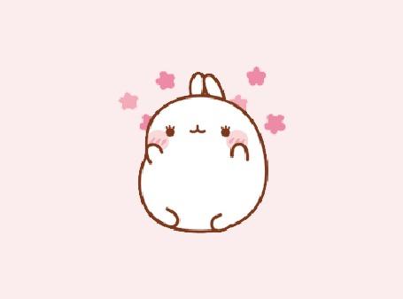 Анимация Molang rabbit / Кролик Моланг радуется жизни