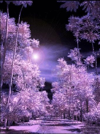Анимация Красивый сиреневый лес