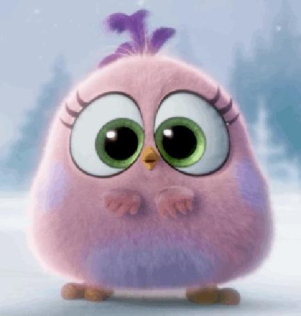 Анимация Розовый птенец под падающим снегом, мультфильм Angry Birds / Энгри Бердс / Злые птицы