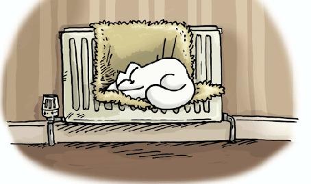 Анимация Спящий белый кот Саймона, мультик Simons cat