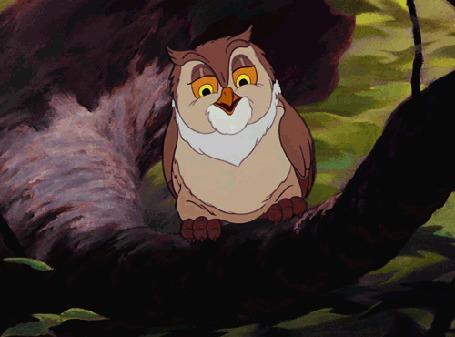 Анимация Сова сидит на ветке, мультфильм Бемби / Bambi