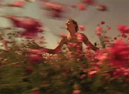 Анимация Парень бежит по полю с цветами