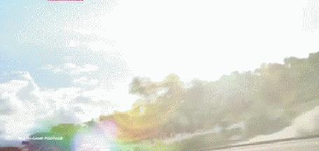 Анимация Три гоночных спортивных авто, из игры Forza Horizon 3