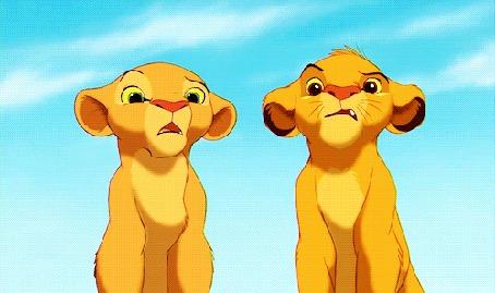 Анимация Симба и Нала из мультфильма Король Лев / The Lion King