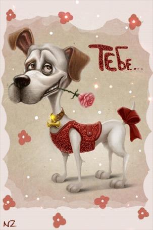 Анимация Пес в красивой безрукавке, с бантом на хвосте держит розовую розу в зубах (Тебе.)