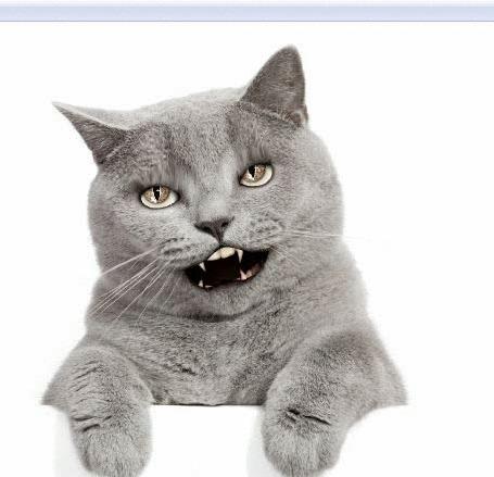 Анимация Серый кот закатывает глаза