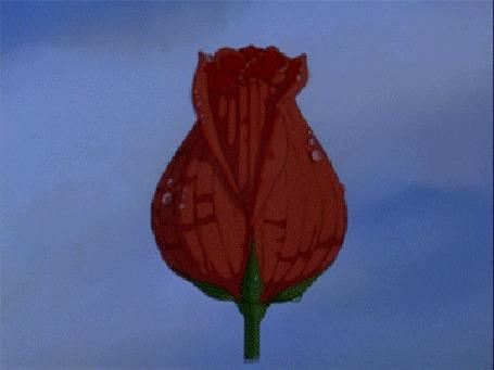 Анимация В распустившемся цветке лежит девушка Дюймовочка