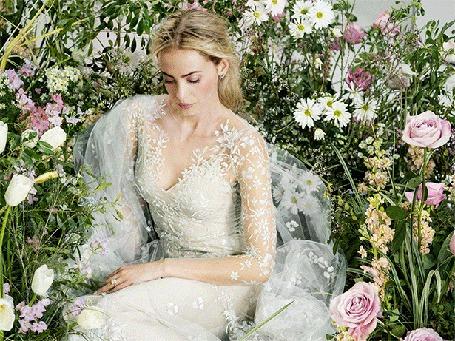 Анимация Laurel Pantin в белом свадебном платье сидит, опустив голову, среди роз, тюльпанов и ромашек, by Ann Street Studio