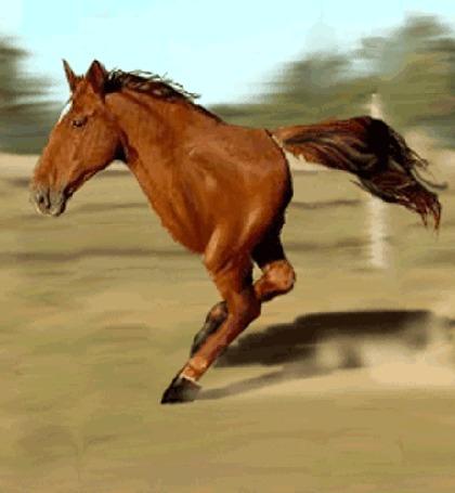 Анимация Гнедая двуногая лошадь (Equus tygydymensis) бежит по проселочной дороге