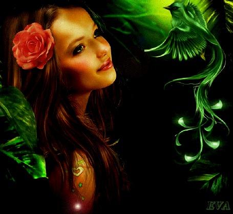 Анимация Девушка с розовой розой в длинных темных волосах, by EVA
