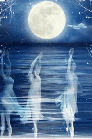 Анимация Танцующие балерины и летающая бабочка на фоне воды и луны
