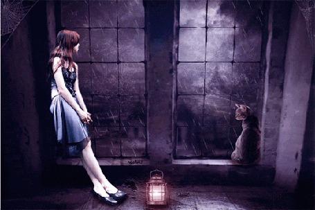Анимация Девушка и кот стоят у окна, за которым идет дождь и светит молния
