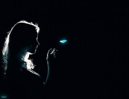 Анимация Девушка и ночной мотылек в свете луны