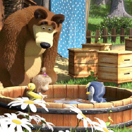 Анимация Медведь смотрит как плавает Маша с птенцом в кадушке с водой, мультфильм Маша и Медведь