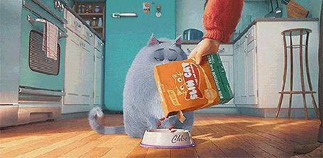 Анимация Кошка Хлоя персонаж из мультфильма Тайная жизнь домашних животных / The Secret Life of Pets