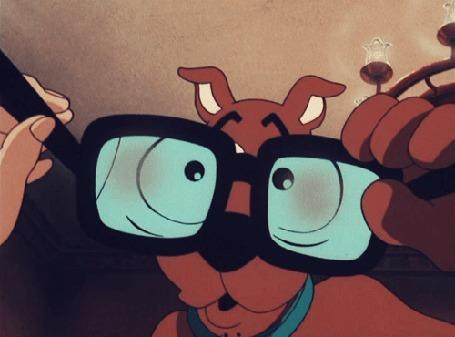 Анимация На собаку, которая моргает, смотрят через очки