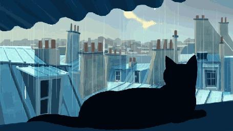 Анимация Черная кошка виляет хвостом и смотрит на капающий дождь