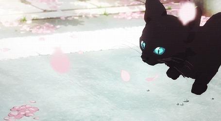 Анимация Убегающий от девочки котенок