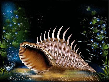 Анимация Большая раковина лежит на морском дне среди водорослей, около нее плавают рыбки
