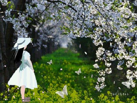 Анимация Девушка с темными длинными волосами в белой шляпе и в белом платье стоит на траве на аллее на фоне цветущего дерева и белых бабочек