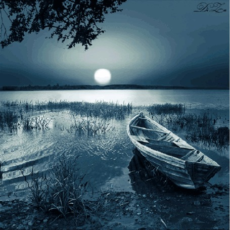 Анимация Лодка на берегу озера на фоне веток дерева и солнечного заката