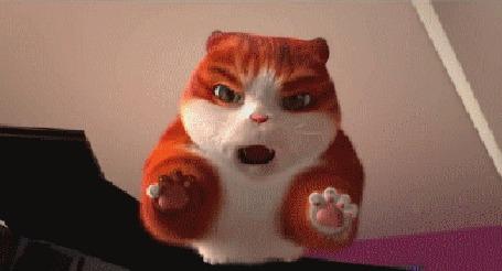 Анимация Из короткометражного мультика »Селфи кота», разозлившийся от фотографирования кот летит на хозяйку. У хозяйки выбит зуб, подбитый глаз но зато лайков