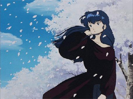 Анимация Девушка Кеко Отонаси с голубыми волосами стоит под падающими весенними лепестками, Аниме / Maison Ikkoku