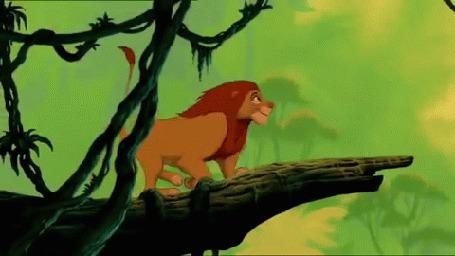 Анимация Кадр из Диснеевского мультика Король Лев, лев зацепился зубами за лиану падает в воду