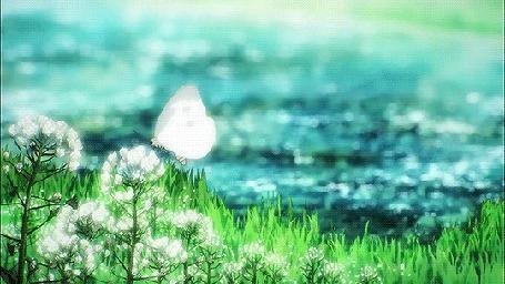 Анимация Бабочка сидит на цветке на поляне перед рекой