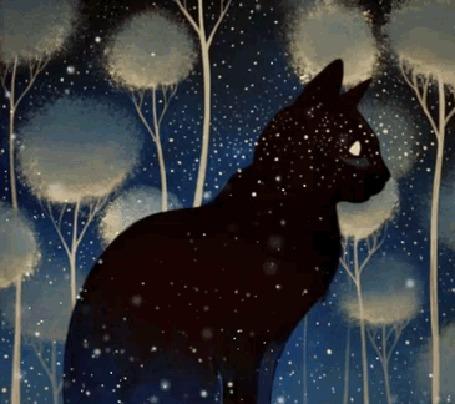 Анимация Черный кот сидит на фоне деревьев, by Raphaël Vavasseur