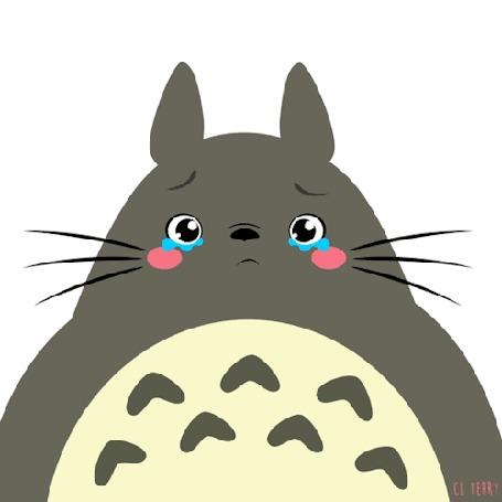 Анимация Totoro / Тоторо из аниме Tonari no Totoro / Мой сосед Тоторо плачет, by CL Terry (© zmeiy), добавлено: 30.08.2016 14:23