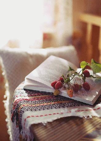 Анимация Раскрытая книга на столе с лежащими веточками малины