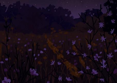 Анимация Светлячки на ночной поляне