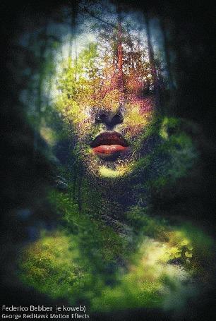 Анимация Струящийся силуэт девушки из освещенной части леса, by Federico Bebber