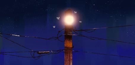Анимация У светящегося фонаря на столбе летают мотыльки