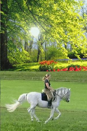 Анимация Прекрасная погода, солнце светит сквозь кроны деревьев, цветут тюльпаны, девушка скачет на белой лошадке