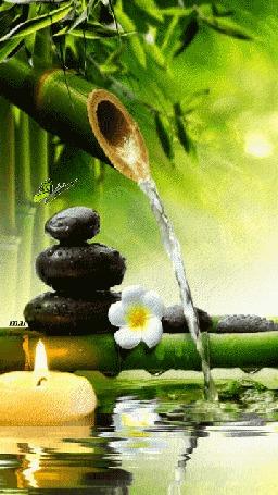 Анимация Из бамбукового стебля льется вода на фоне горящей свечи, белого цветка и камней